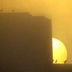 sunrise... (Marcilia Bevitori) Tags: marciliabevitori minasgerais natureza nature brasilemimagens ngc sunlight sun amanhecer sunrise