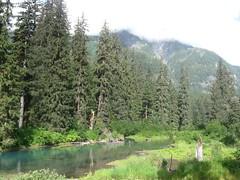 Undisturbed (artofjonacuna) Tags: landscape trees mountain alaska