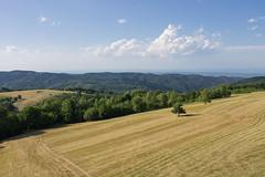 Kozara landscape (Damir Dj) Tags: kozara golaplanina balkan bosna republikasrpska pejzaž