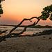 Angular+Sunset