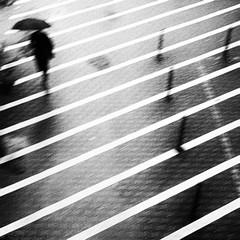 rainy day (www.streetphotography-berlin.com) Tags: rainyday rain woman alone umbrella lines berlin street streetphotography streetlife monochrome blackandwhite blackwhite motionblur abstract