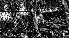 #raptor #playaschild #raptorisback #jurassikworld #blackandwhite #biancoenero #dinosauri #gioco #preistoria (marcovizzini) Tags: raptorisback preistoria black jurassikworld raptor playaschild gioco biancoenero dinosauri