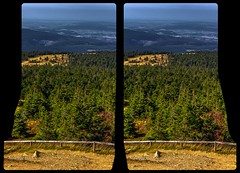 Mount Brocken viewpoint 3-D / CrossEye / HDR / Raw / Stereoscopy (Stereotron) Tags: sachsenanhalt saxonyanhalt ostfalen harz mountains gebirge ostfalia hardt hart hercynia harzgau forest woods outback backcountry wilderness indiansummer autumn fall nationalpark germany centraleurope crosseye crosseyed crossview xview cross eye pair freeview sidebyside sbs kreuzblick 3d 3dphoto 3dstereo 3rddimension spatial stereo stereo3d stereophoto stereophotography stereoscopic stereoscopy stereotron threedimensional stereoview stereophotomaker stereophotograph 3dpicture 3dglasses 3dimage forst hyperstereo twin canon eos 550d yongnuo radio transmitter remote control synchron kitlens 1855mm tonemapping hdr hdri raw