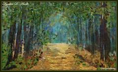Foresta - Luglio-2017 (agostinodascoli) Tags: foresta bosco alberi nikon nikkor texture impressionismo colore fullcolor cianciana sicilia nature verde creative landscape paesaggi nikonclubit