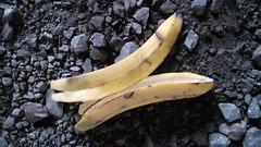 Cáscara de plátano (moasel1) Tags: cáscara plátano