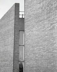 zigzag (OhDark30) Tags: olympus 35rc 35 rc film 35mm monochrome bw blackandwhite bwfp fomapan 200 rodinal carrslane brickwork bricks zigzag birmingham flemish gardenwall bond