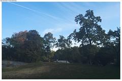 New York. Central Park (Mika Stetsovski) Tags: usa сша ньюйорк newyork nyc central park