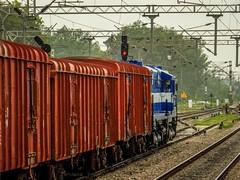 Fresh Rebuilt WDM-3A of LDH with frieght at Rajpura ! (Vijesh Kannan) Tags: diesel alco wdm3d ludhiana rajpura frieght train ldh rbr rebuilt dmw patiala