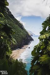 Kalalau Trail (Patrick.Burns) Tags: water shore island napalicoast kalalautrail hanakapiaibeach kauai hawaii trail hike