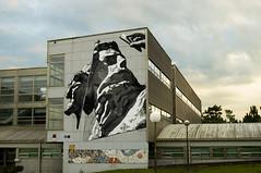 Ino - Roaming in Paradise - Desordes Creativas 2015 (A. L. Crego) Tags: desordescreativas street art festival ino ordes acoruña alcrego mutante creativo