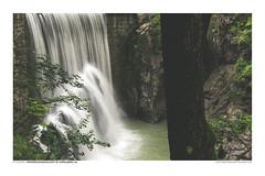 FOTOSERIE RAPPENLOCHSCHLUCHT #6 (PADDYSCHMITT.DE) Tags: rappenloch rappenlochschlucht klamm bergbach dornbirn voralberg gäntle wasser tobel wasserfälle wald natur outdoor waterfall river