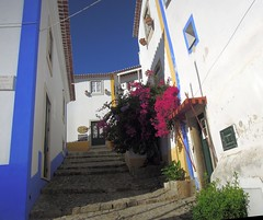 Portugal (Obidos) Picturesque town with cobbled streets and traditional painted houses (ustung) Tags: portugal obidos town cobbled street painted houses traditional flowers nikon