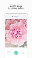 1 (picturethis_plants) Tags: picturethis app