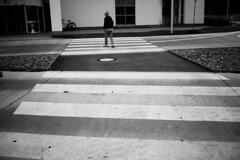 One more zebra crossing (stefankamert) Tags: stefankamert street zebra woman lines blackandwhite noir bw bnw baw blurry rx1 sony rx1r fullframe sonyrx1 sonyrx1r mirrorless