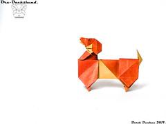 Oru-Dachshund - Barth Dunkan. (Magic Fingaz) Tags: anjing barthdunkan chien chó dog hond hund köpek origami origamidog perro pies пас пес собака หมา 개 犬 狗