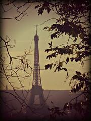 2009: The Eiffel Tower from Sacré-Cœur (dominotic) Tags: eiffeltower fromsacrecoeur montmartre iron latoureiffel lattice paris france sky cloud tree green