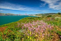 The San Francisco Bay and Golden Gate Bridge (ap0013) Tags: california san francisco ca cali cal sanfran sanfrancisco landscape hdr lands end park golden gate bridge bay sanfranciscobay landsend landsendpark goldengatebridge