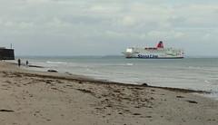 17 07 30 Stena Europe Rosslare  (4) (pghcork) Tags: stenaline stenaeurope stenahorizon rosslare wexford ireland ferry