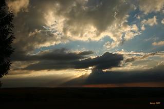 Sonnenuntergang im Nationalpark Eifel