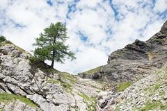 Derborence-Anzeidaz-3 (pichmoly.sun) Tags: derborence anzeidaz valais conthey suisse switzerland