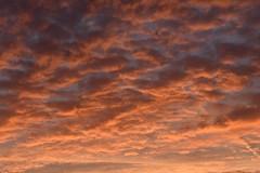 Red Sky in Wokingham, Just Before Dawn (rq uk) Tags: rquk nikon d750 nikond750 afsnikkor70200mmf28efledvr clouds red sky wokingham sunrise before dawn beforedawn redsky