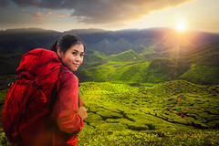 Asian lady backpack and travel the green tea plant in Cameron highlands (anekphoto) Tags: tea cameron malaysia green plant highlands travel landscape plantation nature beautiful field farm leaf agriculture mountain background fresh tree highland asia hill valley people summer outdoor lady woman trip picnic park backpack morning sunset tourism rural plantations sunrise portrait lifestyle environment freshness asian thai tourist land destination agricultural leaves scene
