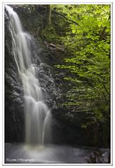 Without polariser (Lynne J Photography) Tags: cumbria lakedistricy kellyhalltarn sunrise nikon tarn reflection sunset lonetree lone tree waterfalls longexposure tomgillfalls