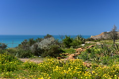 Sicily, 394 (tango-) Tags: sicilia sizilien sicilie italia italien italie