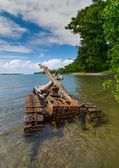 Rusting and abandoned world war 2 american tank left for many years after being dumped in the sea, Shefa Province, Efate island, Vanuatu (Eric Lafforgue) Tags: a0010029 abandoned adventures american army artillery colourimage day efate equipment etonbeach historic history island melanesia military newhebrides nopeople ocean oceania outdoors pacificislands pacificocean paunangisu photography rusting rusty sea southpacific tanks tourism transportation traveldestinations tree tropical vanuatu vehicles vertical war water weapons wreck ww2 efateisland shefaprovince vut