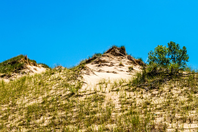Indiana Dunes National Lakeshore - July 25, 2017
