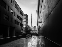 Monochrome Burj (Andy Arciga) Tags: cityscape landmarks landmark landscape burjkhalifa towers monochrometower dubai olympus omdem10 unitedarabemirates mirrorless