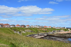 Collywell Bay houses (DavidWF2009) Tags: northumberland seatonsluice collywellbay sea rocks cliff houses