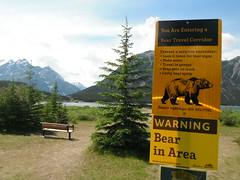 K - Country Safe Walk  #hss  #hbm  #albertabound (Mr. Happy Face - Peace :)) Tags: albertabound yyc art2017 cans2s bearcountry scenery canada warning happybenchmonday benchmonday bench emptyseat bear environment