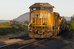 DPU (Tom Trent) Tags: dpu up unionpacific lanecounty oregon dougren siding signal switch sd70m emd diesel locomotive mill blackberrybushes clearcut seriese75150mmf35