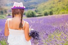 Dans les champs de lavande (Nathalie Le Bris) Tags: lavanda lavander flor violeta provence luberon flare