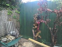 Finished. (Pete 1957) Tags: garden fence diy saffronwalden coathfamily essex