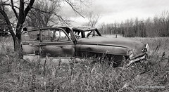 Prairie Reject III (/ shadows and light) Tags: 1953chevroletbelair nearlancaster minnesota abandoned automobiles beaters cars clunkers countryside old rustbuckets textures trees vehicles vintage bw monochrome trixgrain