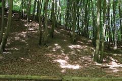Herthaburg (julia_HalleFotoFan) Tags: rügen inselrügen jasmund nationalparkjasmund königsstuhl viktoriasicht buchenhochwald herthasee halbinseljasmund