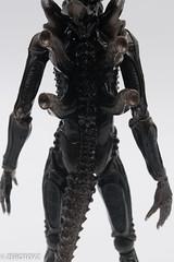 _DSC0978 (ZeroToyz) Tags: alien thedrone エイリアン revoltech 山口式 海洋堂 海洋堂山口式