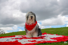 Canada Day 150 (Valery_RW) Tags: rw photo canada day 150 winnipeg