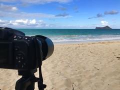 From a Distance (Solomon Thompson) Tags: side east hawaii island ocean water beach