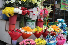 Flowers Bucket Florist (kingoftroublemakers) Tags: flowers bucket salesman india new delhi colors flower nature beauty beautiful