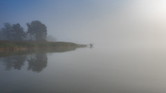 Morning mist (Jens Haggren) Tags: morning mist fog sea water reflections trees sky view mood atmosphere nacka sweden jenshaggren