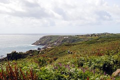 Walkers on the South West Coast Path (zawtowers) Tags: cornwall kernow summer holiday break vacation july 2017 porthcurno porthkornow thursday 20th sunshine sunny afternoon blue skies warm national trust coastline beach seaside sea south west coast path walkers following trail