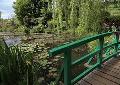 Monet's Bridge (smitchelrific) Tags: garden impressionism colour monet france giverny pond lily bridge green