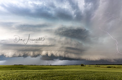 Wheat and Weather (Don Arsenault) Tags: field agriculture weather storm lightning clouds cloudsstormssunsetssunrises landscape albertacanada canada camrose canonef2470f28lii canoneos5dmarkiii donarsenault
