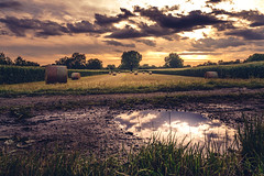 Puddle and Bales II (HatCat Photography) Tags: field sky landscape sunset water nature travel tree grass evening sony dawn cloud agriculture panoramic farm outdoors puddle horizontal scenic hayfield bales no person