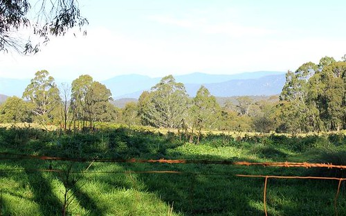 Cnr Araluen Road and Monga Lane Reidsdale, Braidwood NSW