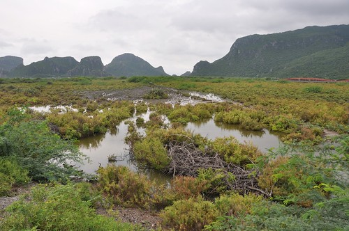 parc national sam roi yot - thailande 31