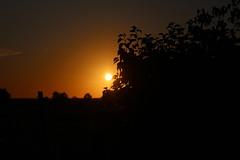 IMG_8358 (PURÊN MICHEL 49) Tags: ciel soleil leverdesoleil